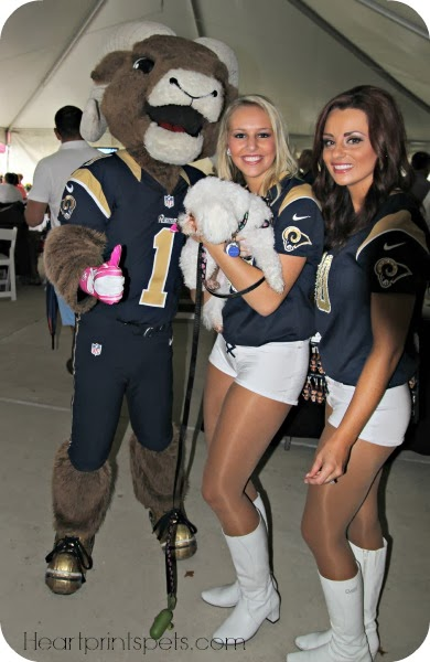 Delia Rampage and Rams Cheerleaders