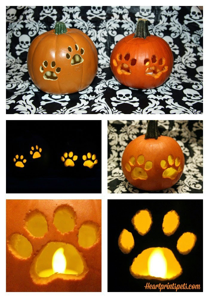 DIY Paw Print Pumpkin Fall Decor