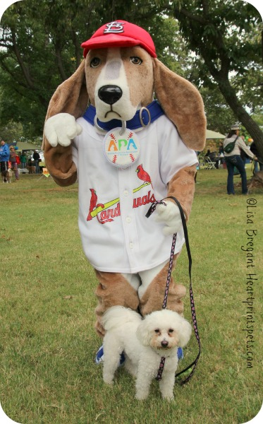 Delia and the APA Mo Mascot at Canine Carnival 2013