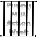 Help Stop Breeding Misery in Puppy Mills
