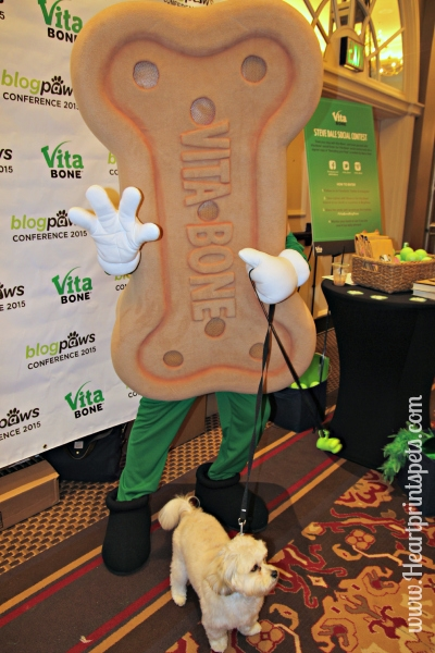 Chewy and Vita Bone at BlogPaws
