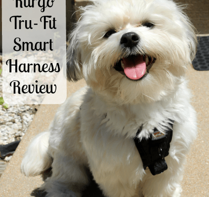 Kurgo Tru-Fit Smart Harness Review