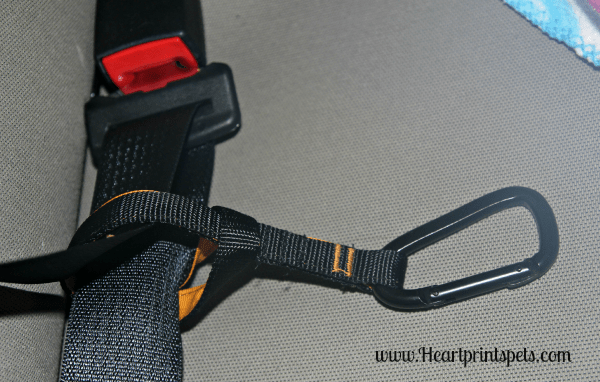 Kurgo Tru-Fit Smart Harness Tether