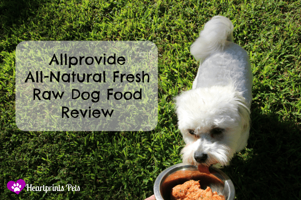 Allprovide All-Natural Fresh Raw Dog Food Review