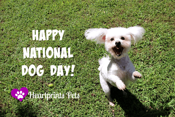 National Dog Day 2015 Heartprints Pets