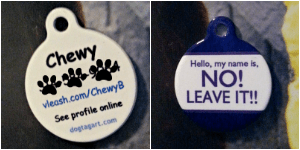 Chewy's Dog Tag Art Tag 4 gifts for pets need