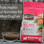 Natural Nutrition From Merrick for the #BestDogEver