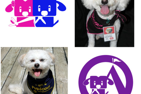 Introducing PupScouts Troop 314