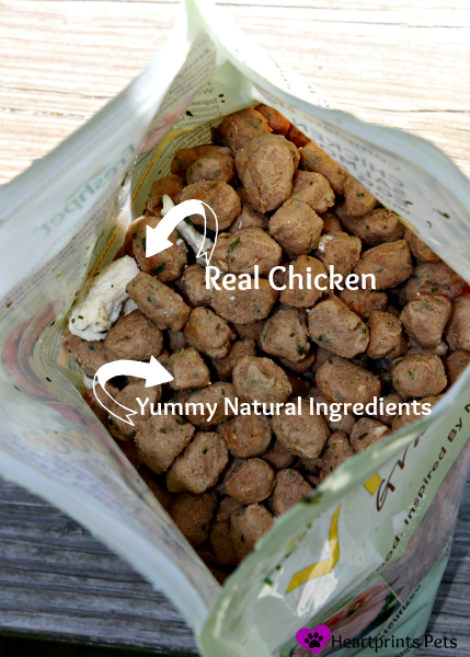 Freshpet Natural Pet Food Healthy Ingredients