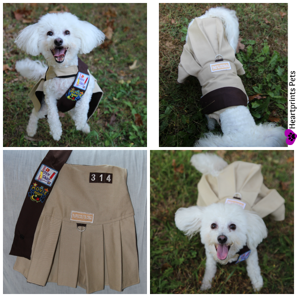 PupScout Troop 314 Leader Delia Uniform