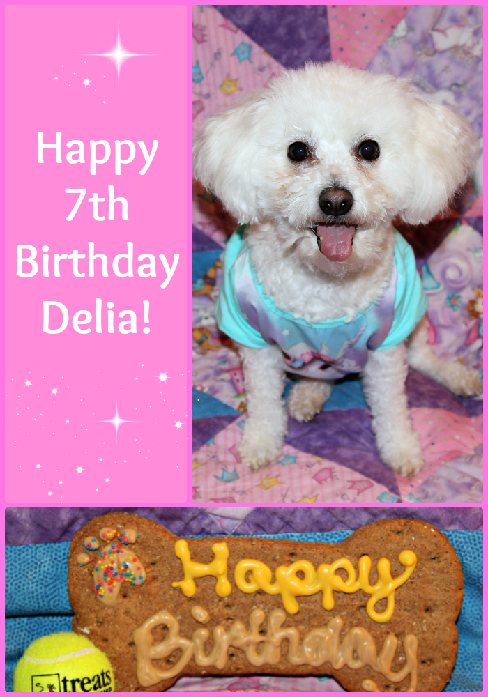 Happy 7th Birthday Delia